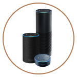 Alexa will be used in the new development